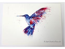 Hummingbird Postcard Print