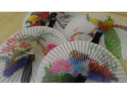 Folding Travel Fan